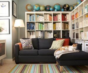 biblioteca in camera mica