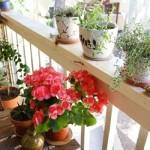 Idei pentru amenajarea balconului mic