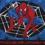 covoras spiderman 1