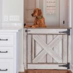 Cum decorezi casa cand ai animale de companie